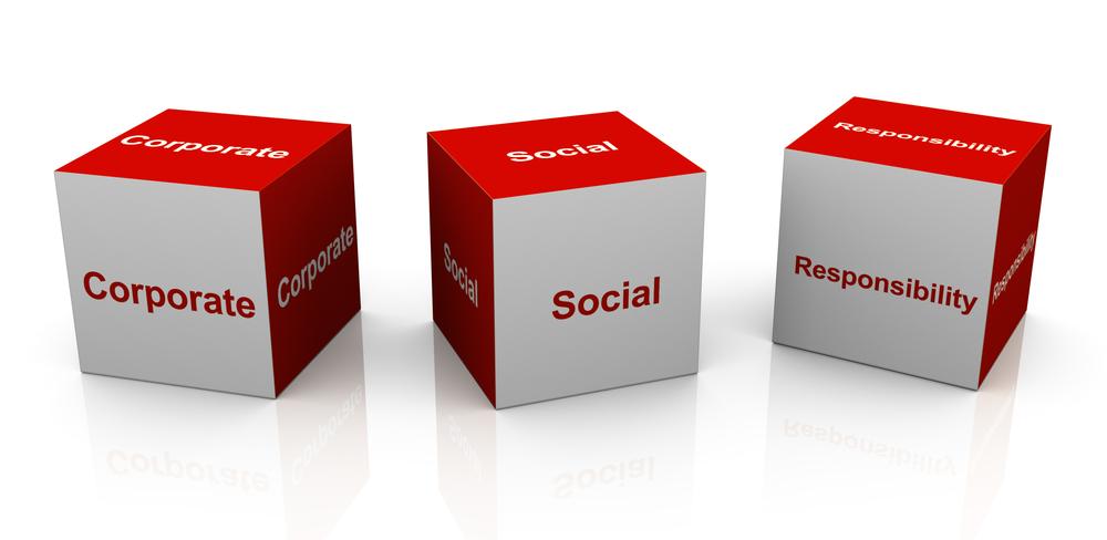 social accountability of tata pdf